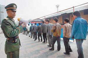 520 Рублей за голову нелегала. как китай борется с непрошенными гостями