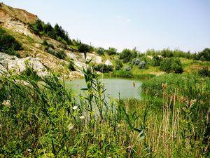 8 Самых красивых парков и заповедников украины: места силы