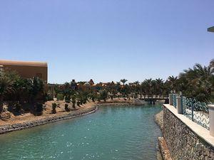 Аэропорты египта снова проверят в сентябре