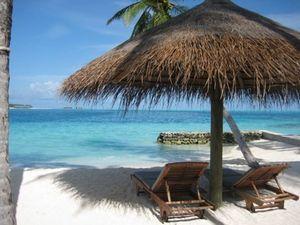 Атор: изменения туристического законодательства разрушат все виды турбизнеса