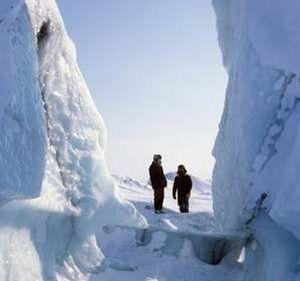 Депутаты госдумы потерялись в антарктиде
