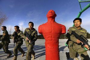 Джозеф най: «мягкая сила китая в китайской мечте»