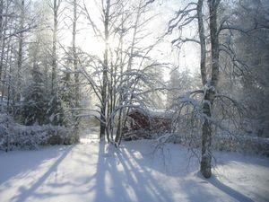 Финские каникулы: экотуризм в лаппеенранте и иматре