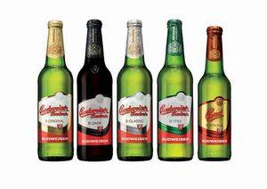 Какое пиво обязательно следует попробовать в чехии