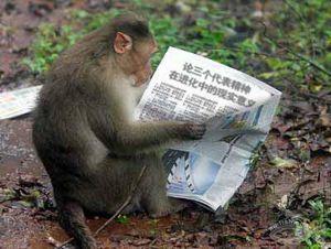 Китайский и иностранные языки, как проявление отсталости человечества