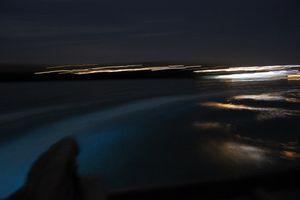 Мерцающие озера гипсленд: когда ночью светится вода