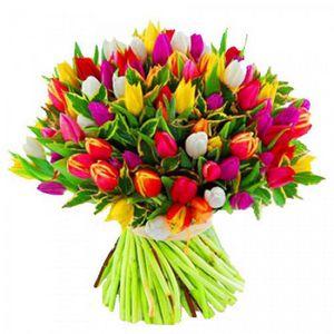 Международная выставка «flowersexpo/цветыэкспо»