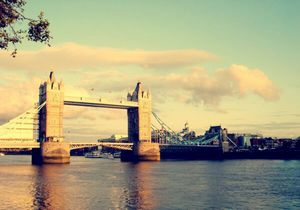 Organic london: ешь, смотри, наслаждайся