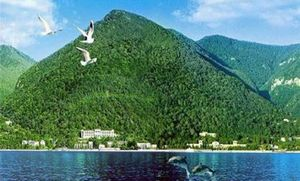Погода в абхазии в августе — климатические условия для отдыха в гаграх