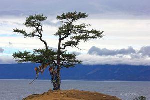 Природа байкала, условия отдыха на озере байкал для туриста