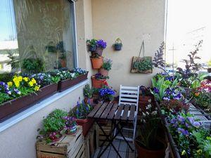 Варианты самостоятельного изготовления кашпо для сада