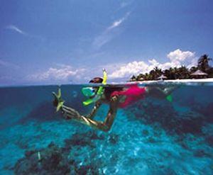 Во время зимних праздников гости курорта huvafen fushi смогут принять участие в проекте по восстановлению кораллового рифа