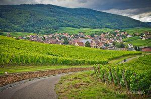 Живописный регион эльзас и винная дорогая эльзаса